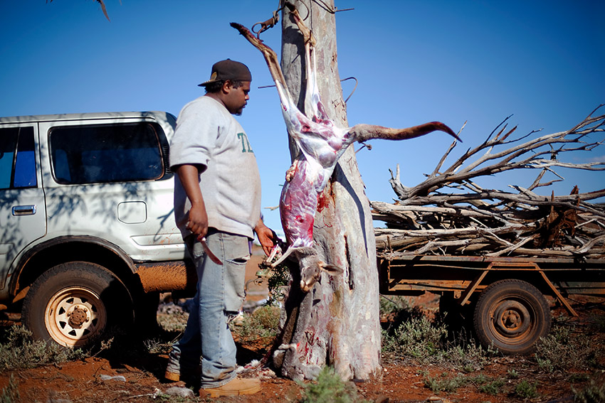 A Kangaroo is skinned after a hunt near Mt. Margaret, Western Australia