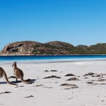 Why You Should Visit Western Australia
